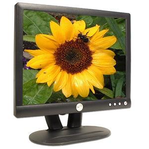 Monitor 15 LCD DELL E153FPB, Black